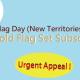 Gold Flag 2019/2020